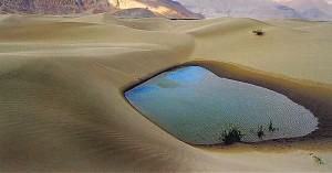 Nubra-Valley-Ladakh