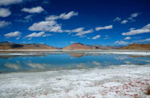 Tso kar rupshu valley ladakh India